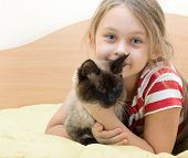 image of siamese  - child with a Siamese cat lying on a bed of yellow color - JPG