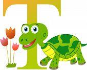 image of letter t  - Vector illustrated alphabet for children - JPG