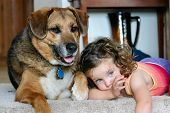 stock photo of pubescent  - little girl and her dog laying down at the top of a staircase - JPG