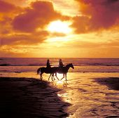 foto of horse riding  - Horseriding on the beach at sunset - JPG