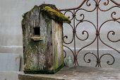 Old moss covered birdhouse. Object photo. horizontal shot