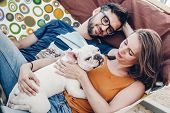 Cute Couple Lying In A Hammock With A Dog, Funny White Bulldog Relaxing With A Hipster Young Family poster