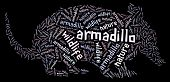 picture of armadillo  - Textcloud - JPG