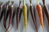 Close-up of carrots arranged side by side on table poster