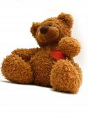image of teddy-bear  - teddy bear - JPG