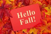 Hello Fall Message, Some Fall Leaves With A Red Greeting Card With Text Hello Fall poster