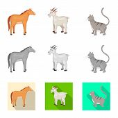 Vector Design Of Breeding And Kitchen  Symbol. Collection Of Breeding And Organic  Stock Symbol For  poster
