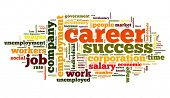 Career related words concept in word tag cloud on white