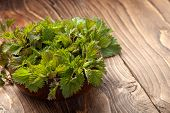 Young Nettle Leaves In A Pot On A Rustic Background, Stinging Nettles poster