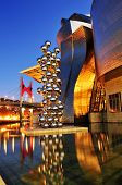 BILBAO, SPAIN - NOVEMBER 14: Guggenheim Museum at night on November 14, 2012 in Bilbao, Spain. The p
