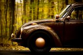 picture of beetle car  - Color shot of a vintage car in a forest - JPG
