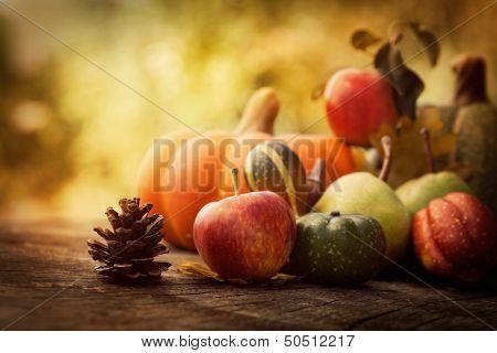 Постер, плакат: Осенние фрукты, холст на подрамнике