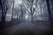 stock photo of bad mood  - Gloomy road durring a cold and dark day of Autumn - JPG