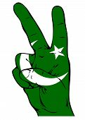 stock photo of pakistani flag  - Peace Sign of the Pakistani flag on a white background - JPG