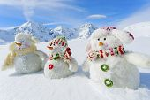 foto of winter sport  - Winter - JPG