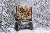 image of logging truck  - Log truck - JPG