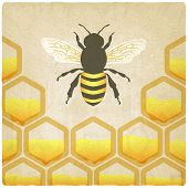stock photo of bee-hive  - bee honeycomb old background  - JPG