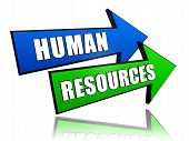Human Resources In Arrows