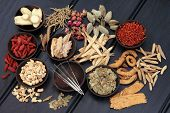 image of ginseng  - Acupuncture needles and chinese herbal medicine selection - JPG