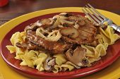 foto of sauteed  - Salisbury steak with sauteed onions nad mushrooms on noodles - JPG