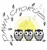 Постер, плакат: Dawn Chorus