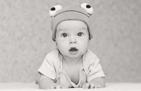 picture of baby frog  - baby in the hat frog lying on his stomach  - JPG
