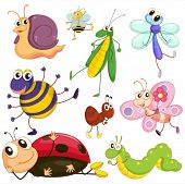 image of caterpillar cartoon  - Illustration of the different insects on a white background - JPG
