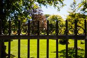 stock photo of wrought iron  - An old black wrought iron fence around a formal garden - JPG