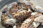 foto of cooked blue crab  - fresh crab in the market for coking - JPG