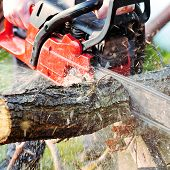 pic of man chainsaw  - sharp chainsaw blade cutting log of wood - JPG