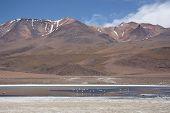 pic of eduardo avaroa  - Remote mountain landscape - JPG