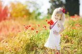 picture of poppy flower  - Little girl  - JPG
