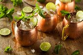 pic of mule  - Icy Cold Moscow Mules with Ginger Beer and Vodka - JPG