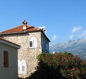 image of oleander  - Ancient buildings and oleander bush in Budva old city Montenegro - JPG