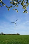 pic of kinetic  - rural landscape with wind turbine and cherry tree blossoms - JPG