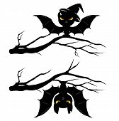 picture of creepy  - creepy bats on tree branches  - JPG