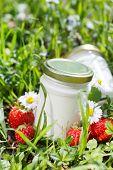 picture of yogurt  - organic yogurt - JPG