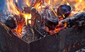 pic of brazier  - Hot logs and branches burning in brazier - JPG