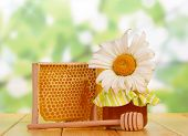 stock photo of honeycomb  - Sweet honey and honeycomb with flower and dipper - JPG