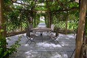 picture of pergola  - Pergola and a rose garden in the country park - JPG