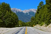 picture of ashes  - Highway in the Argentine Patagonia - JPG