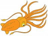image of devilfish  - Vector clipart illustration of a cuttle fish - JPG
