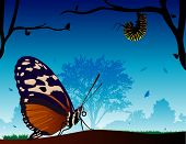 stock photo of cocoon tree  - A beautiful scenery of butterfly - JPG