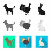 Isolated Object Of Breeding And Kitchen Icon. Collection Of Breeding And Organic Stock Vector Illust poster