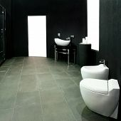 image of lavabo  - Unusual dark style bathroom with black walls - JPG
