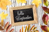 Hello September Lettering Card. Concept Of The Fall Season poster
