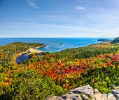 Panoramic View Of The Stunning Fall Colors And Blue Waters Of The Bay In Acadia National Park poster