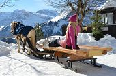image of blanket snow  - Girls on the sledge - JPG