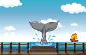 foto of whale-tail  - Illustration of a tail of a whale - JPG