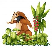 image of ant-eater  - Illustration of an anteater with plants - JPG